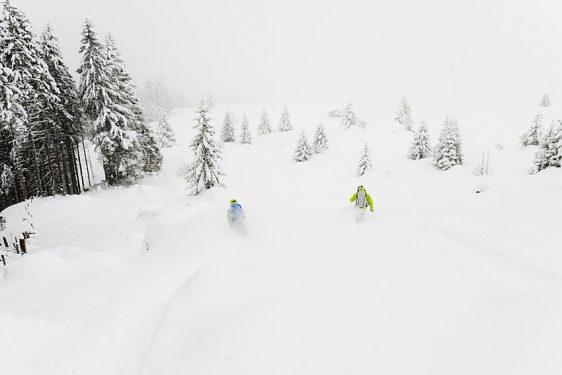 Dra åt skogen – 7 tips när du åker skidor bland träden